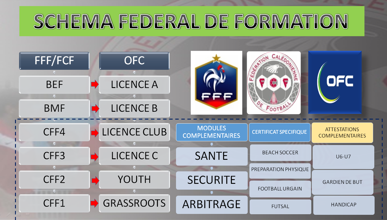 Schéma fédéral de Formation