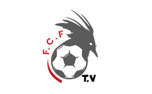 Résumés Matchs / Super Ligue - J14 (VIDEO)
